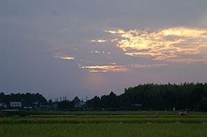 Sunsetsum